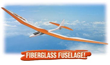DYF Bird of Time ARF 3m Wingspan Glider